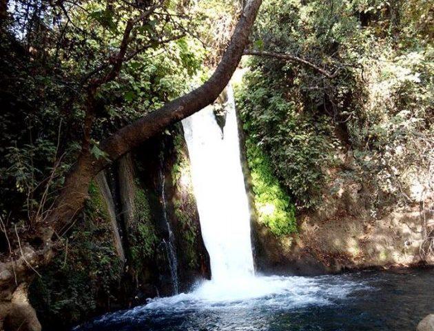 Приглашаем на экскурсию по заповеднику Баниас и вкусным местам Севера