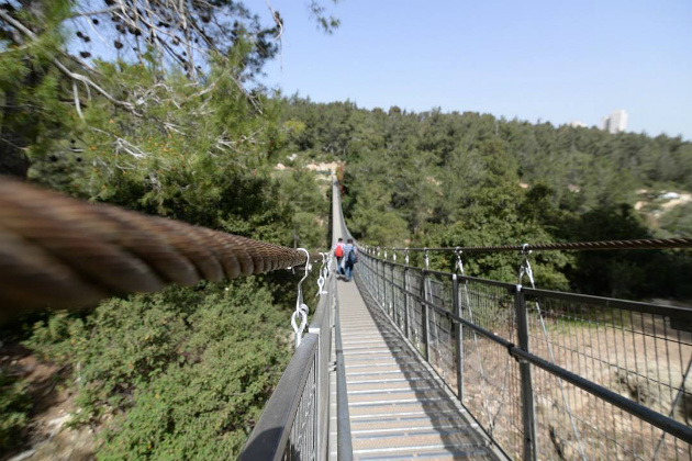 80-метровые висячие мосты вновь открыты для посещения