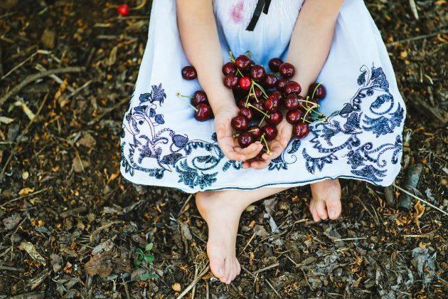 Куда поехать с детьми (и без): сбора вишни и ягод в саду «Берешит а-Голан»
