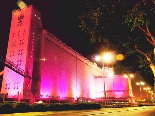 Элеватор «Дагон» может стать частью нового развлекательного комплекса
