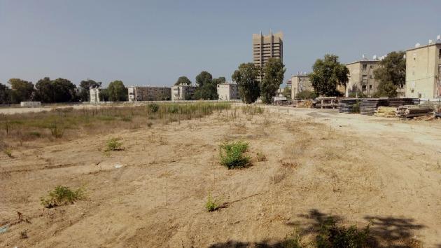 Более 2500 семей «поборолись» за льготные квартиры в Хайфе