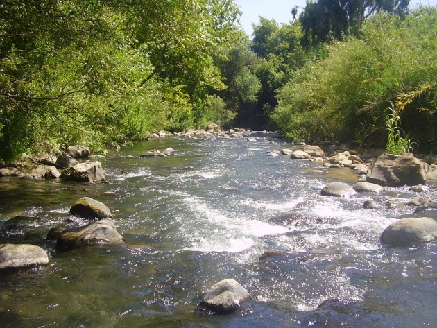 Приглашаем на экскурсию: вода, природа, рыба, икра и шоколад…