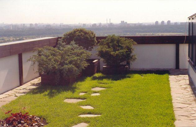 Крыши Хайфы уродуют вид города: репатрианты знают как их изменить