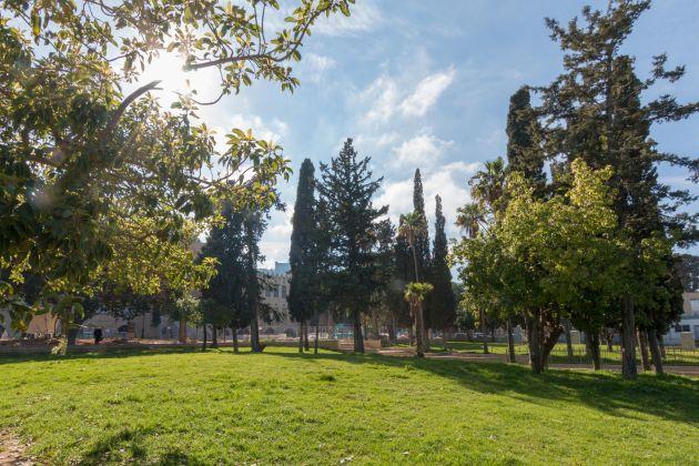 Старейший парк Хайфы обновили и откроют для широкой публики
