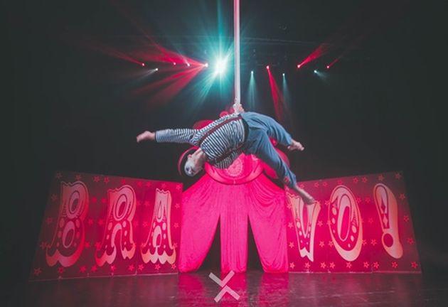 В ближайший Суккот  цирк «Браво» снова с нами!
