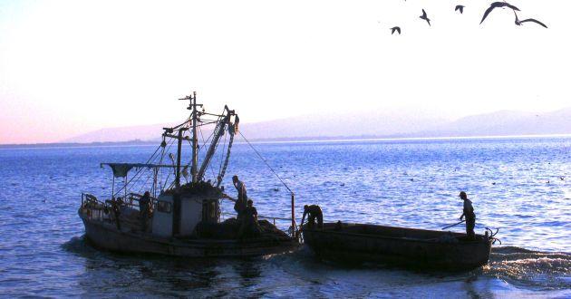 Новый вид отдыха: стать рыбаком на рыболовецком судне на 4-6 часов