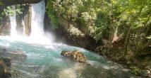 Приглашаем на экскурсию «Водопад, природа, история, рыба и икра»