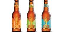 «Шикма» - новое бутичное крафтовое пиво, созданное израильскими пивоварами